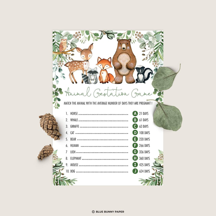 Animal Gestation Game