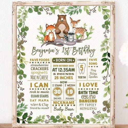 1st Birthday Milestone Poster