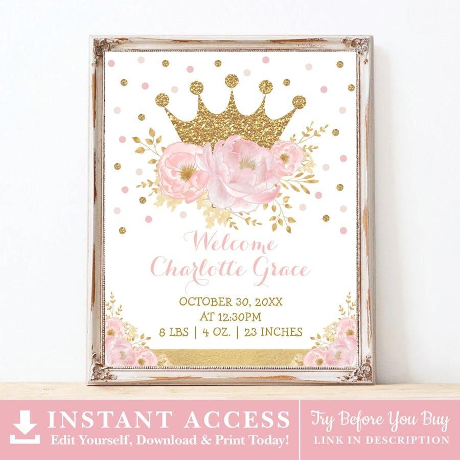 Princess Birth Stats Sign